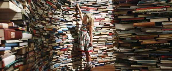 Contoh Kata Pengantar Buku Novel Biografi Diktat Panduan Cerita